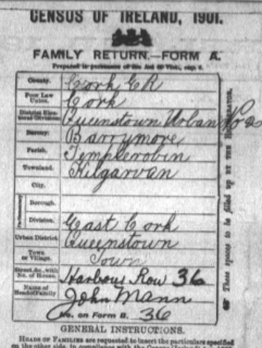 The Cover Page of the 1901 Ireland Census for the Mann family