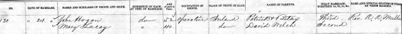 John Hogan & Mary Lucey Marriage Record, 24 Jun 1861, Lawrence MA. Edited.